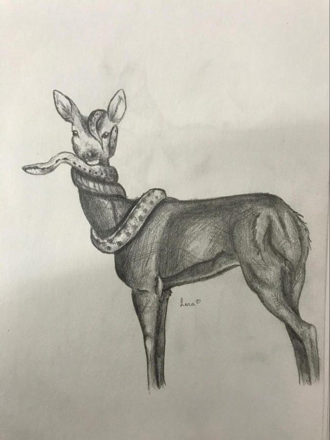 """Titled """"Trust,"""" this is a hand drawn illustration using a 0.7 mechanical pencil. Pictured is a snake enveloping a deer. """"It represents a strong trust between two beings."""" Illustration by Illana Borgensen"""