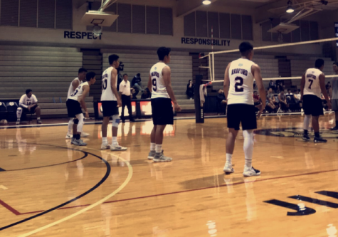 Boys Volleyball Does Their Best on the Court